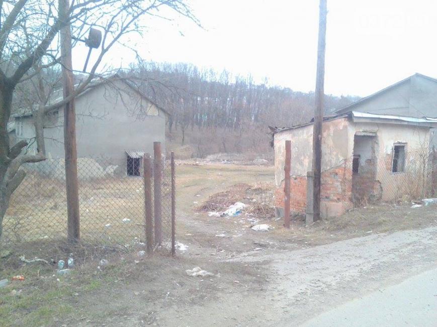 """""""Ідеальне прибирання"""": як у Чернівцях провели місячник благоустрою (ФОТО), фото-3"""