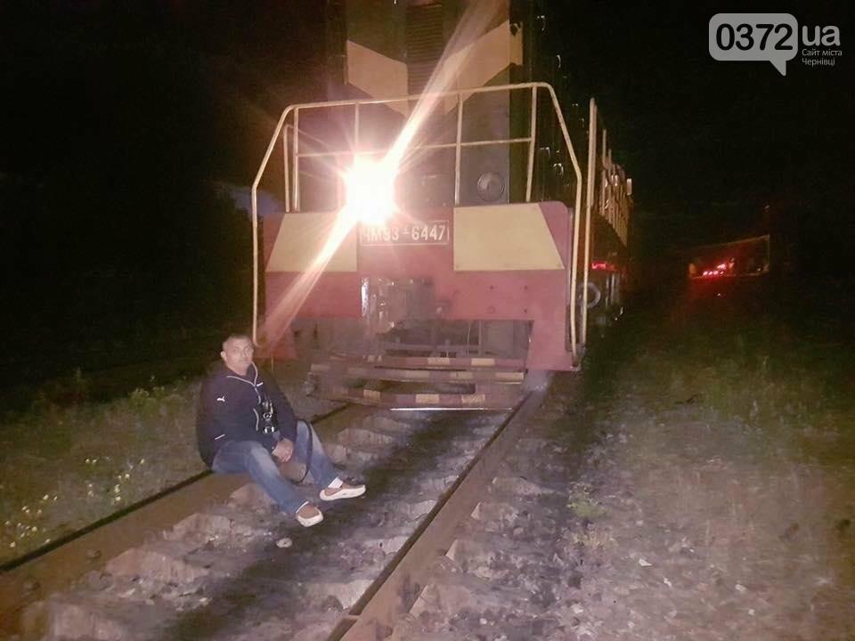 На Буковині український кругляк контрабандисти намагалися вивезти за кордон як німецький ліс (фото), фото-2