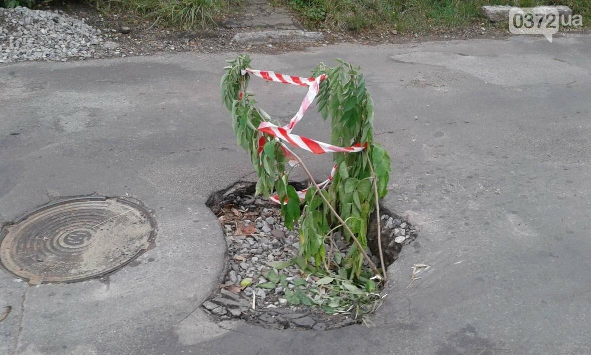 У Чернівцях на вулиці Кармелюка провалився асфальт, фото-1