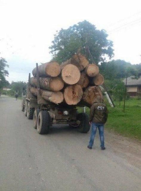 На Буковині СБУ затримала вантажівку з незаконно вирубаною деревиною, фото-1