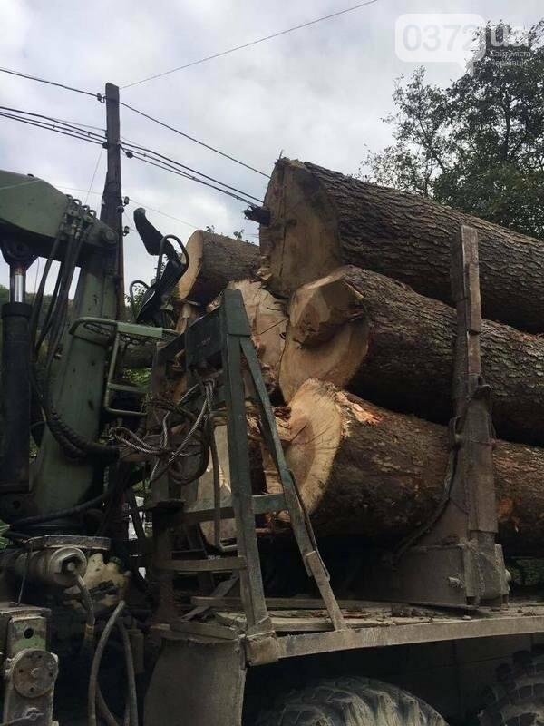 На Буковині СБУ затримала вантажівку з незаконно вирубаною деревиною, фото-3