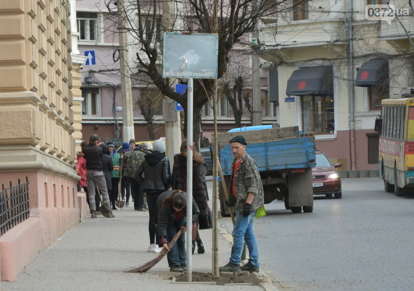 В Чернівцях озеленили центральну частину міста, фото-4