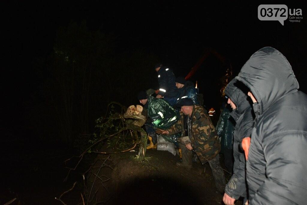 На Буковині завершили роботи з укріплення дамби на річці Черемош, фото-1