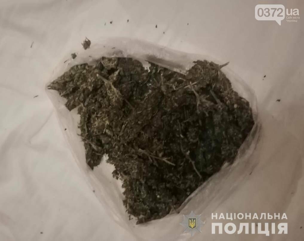 На Буковині вирощували коноплю та збували наркотики, фото-3