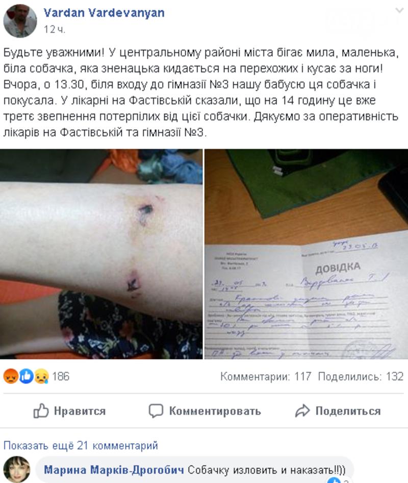 На Буковині на пенсіонерку напала собака, фото-1