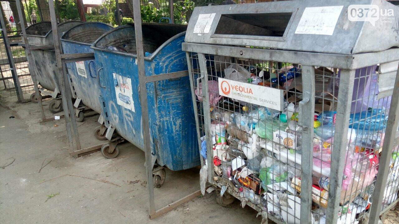 Допоможи собі сам: чому буковинці мають почати сортувати сміття?, фото-2