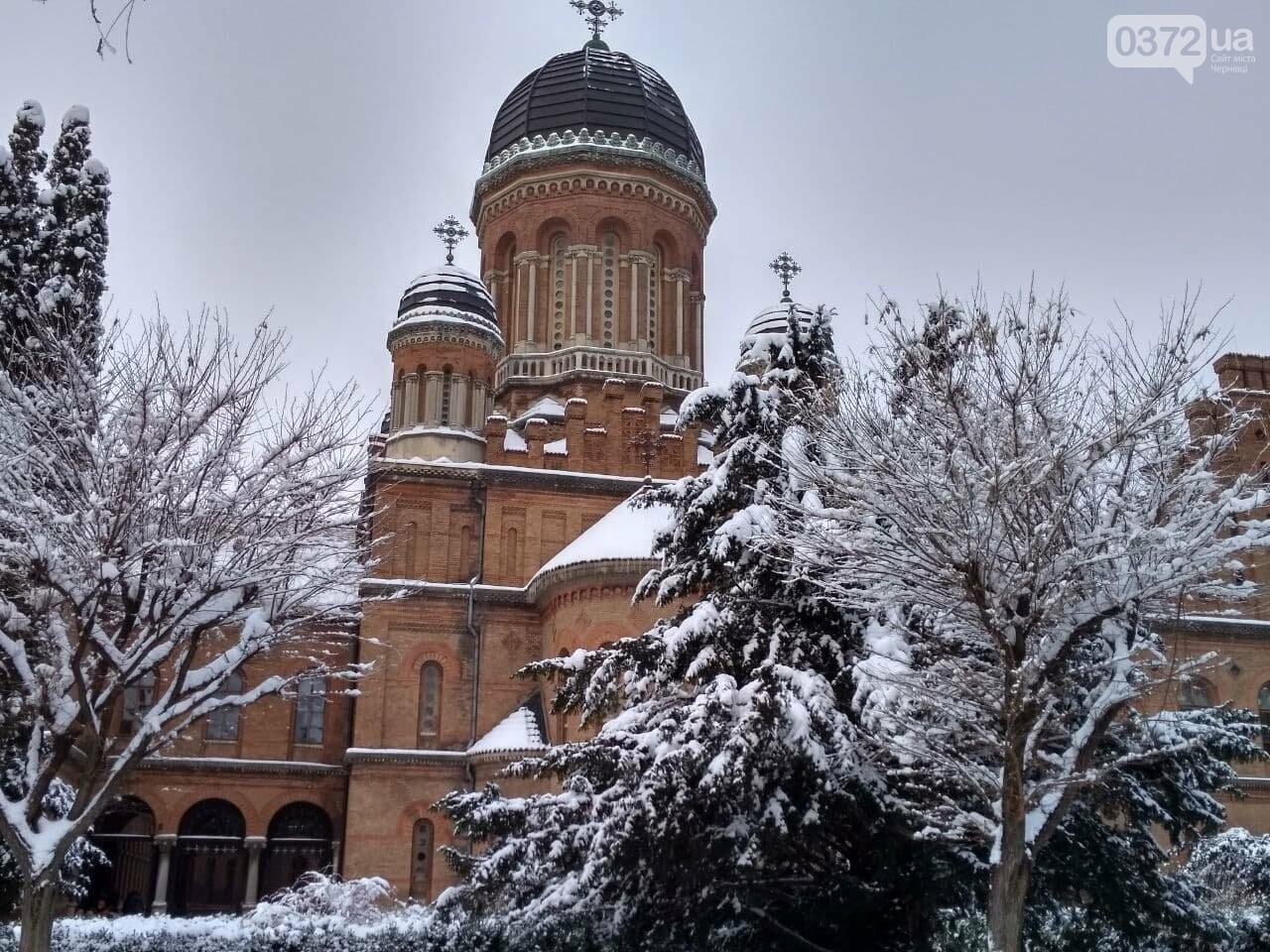 Погода на тиждень у Чернівцях - чого чекати буковинцям, фото-1
