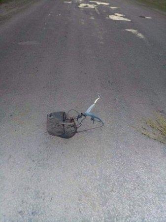 З'явились деталі смертельного ДТП на Буковині (фото), фото-2