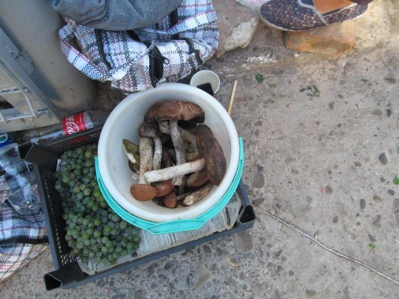 Гриби на чернівецьких ринках продають від 30 до 130 грн за кілограм (фото), фото-3