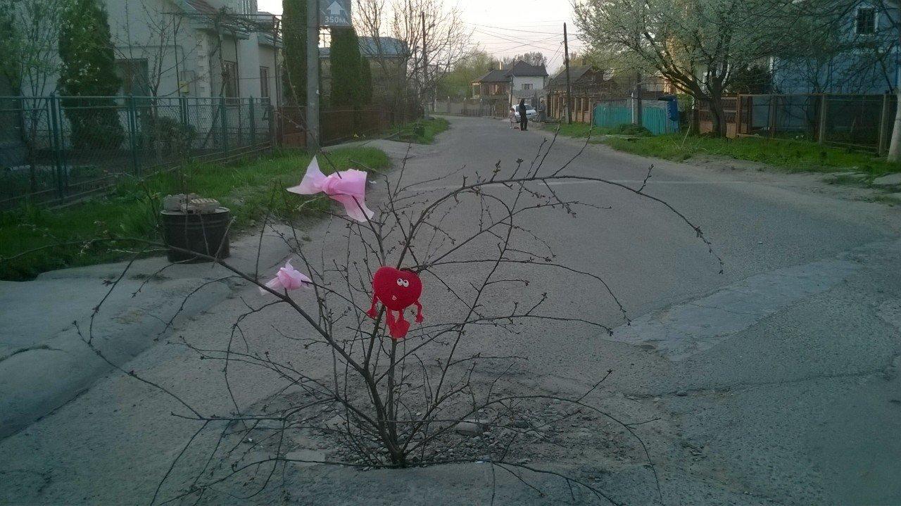 """У Чернівцях в каналізації """"ростуть"""" дерева (фото), фото-1"""