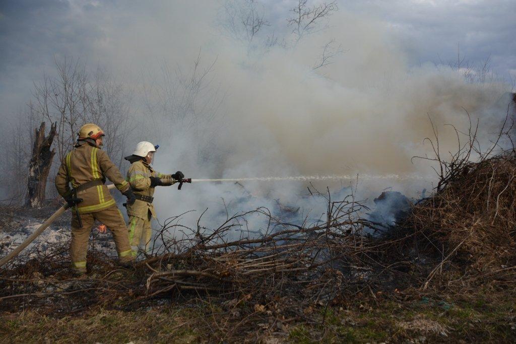 На Буковині за вихідні рятувальники ліквідували 44 пожежі сухої трави, фото-1