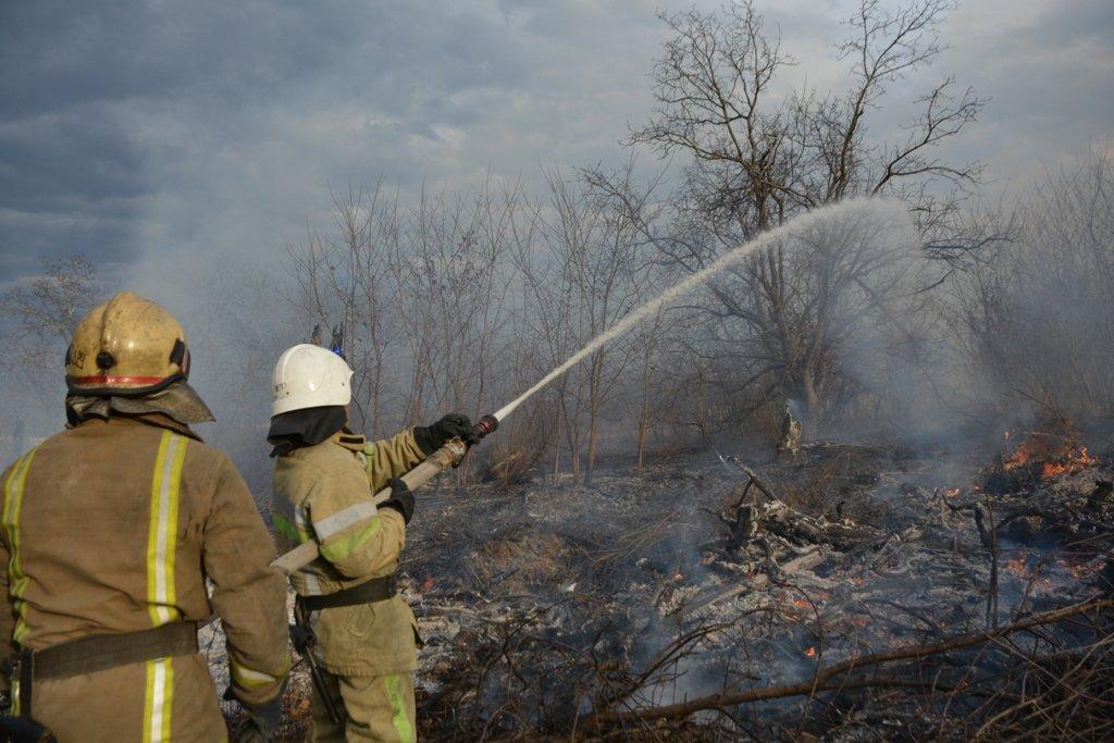 На Буковині за вихідні рятувальники ліквідували 44 пожежі сухої трави, фото-2