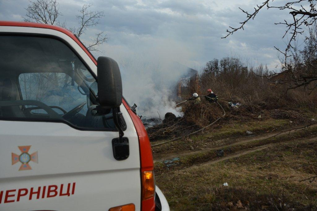 На Буковині за вихідні рятувальники ліквідували 44 пожежі сухої трави, фото-3