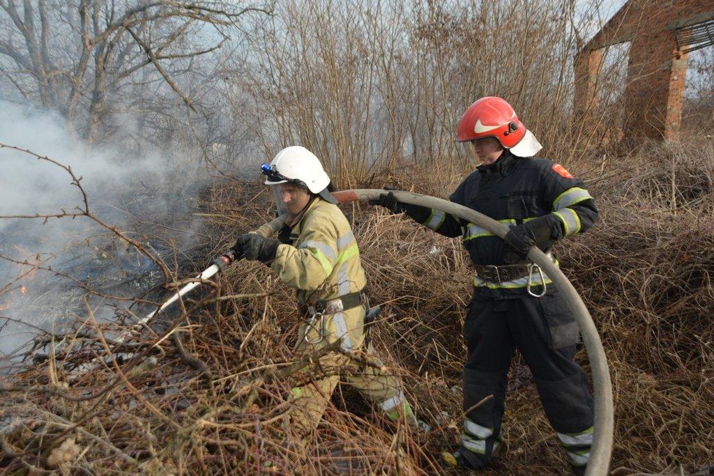 На Буковині за вихідні рятувальники ліквідували 44 пожежі сухої трави, фото-4