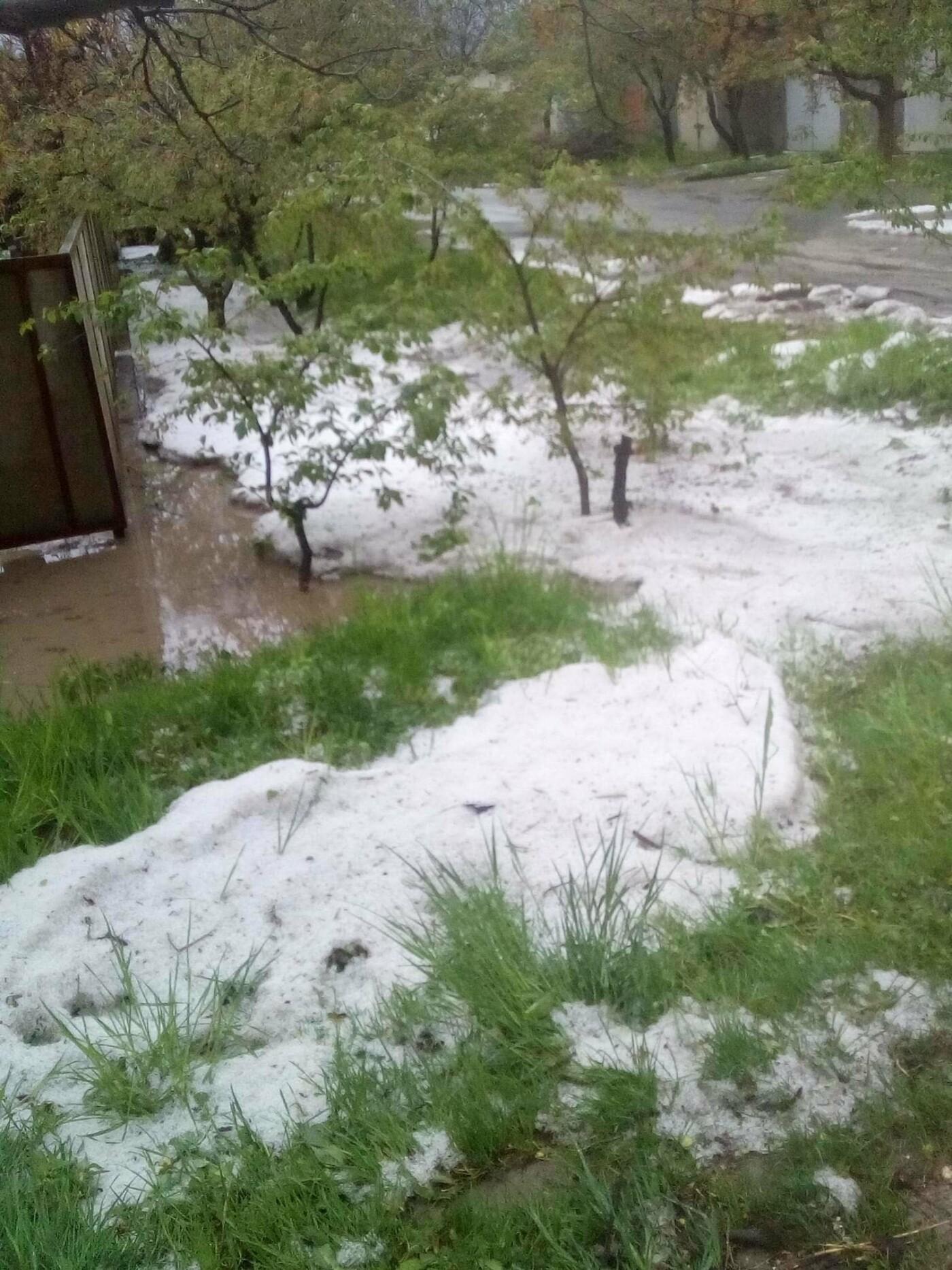 На початку травня на Буковині випав сніг, фото-1