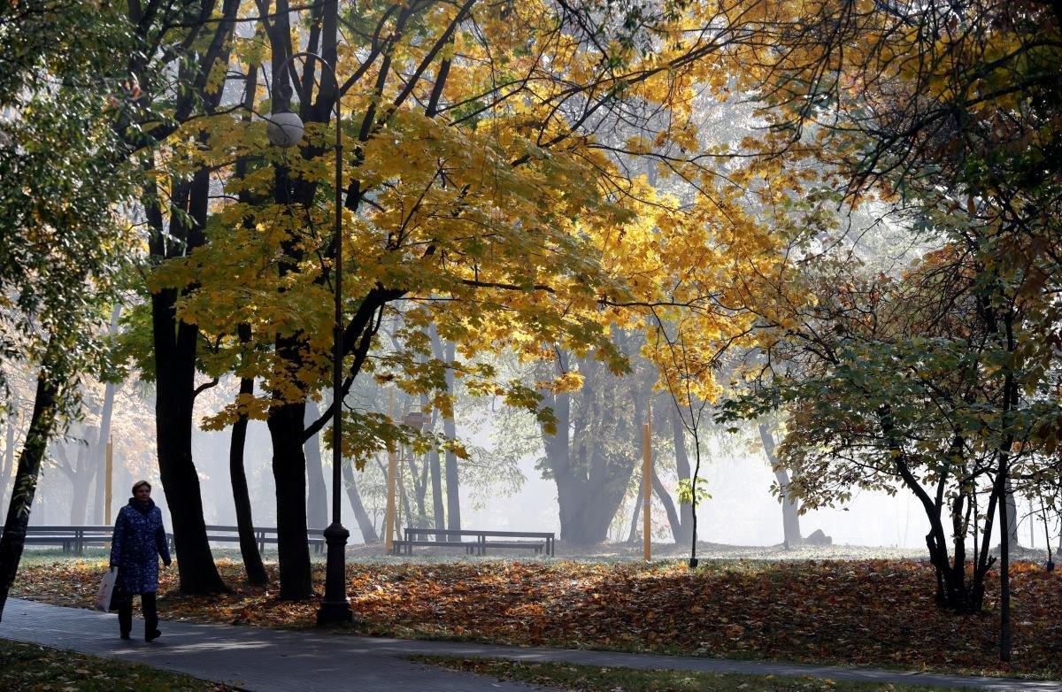 Погода на тиждень Чернівці, Фото: з відкритих джерел