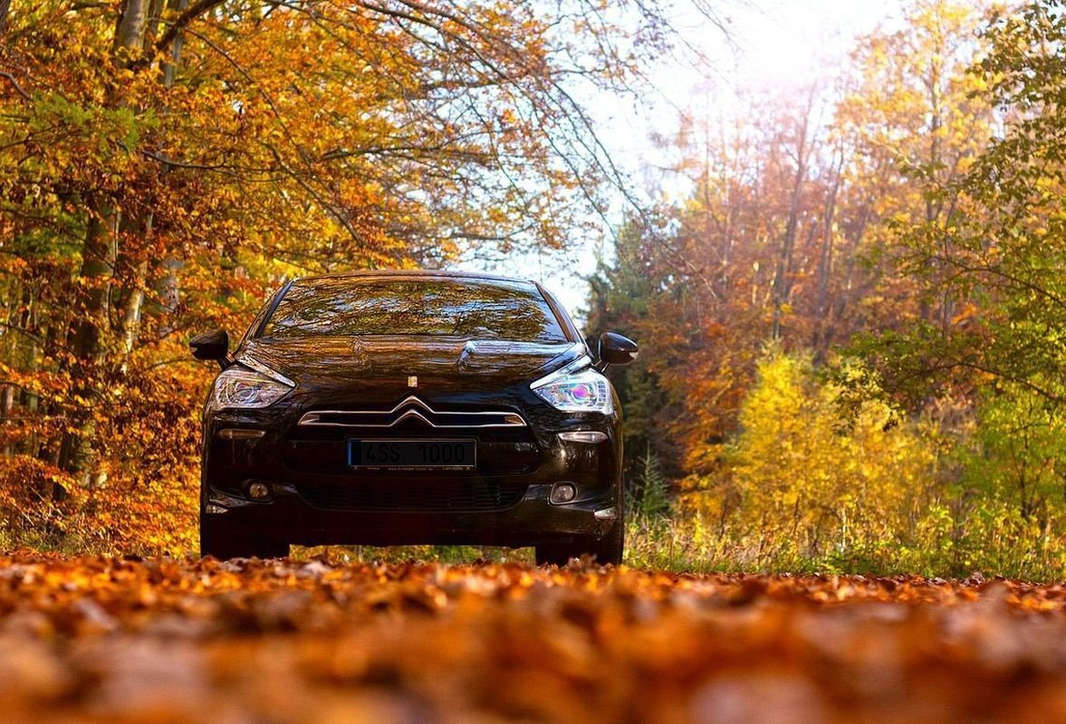 Свято 25 жовтня - день автомобіліста