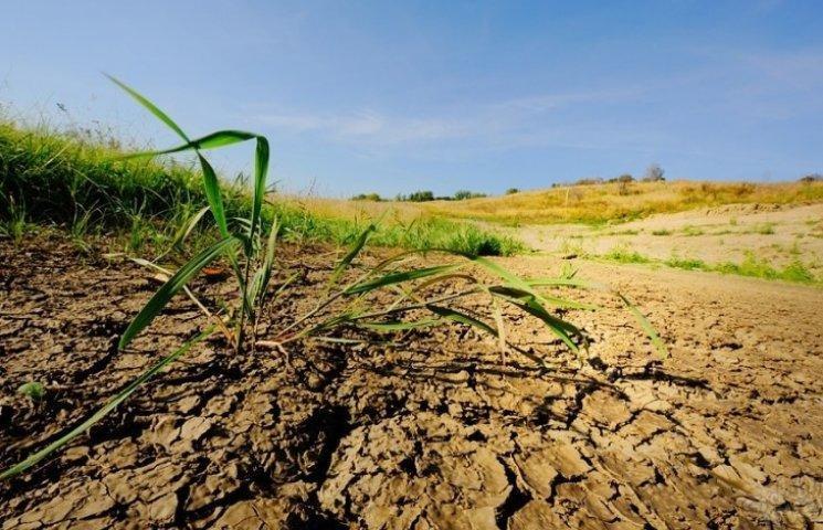 У ґрунті виявлено перевищення забруднювальних речовин по амонію, нітратам, фосфору та хлоридам
