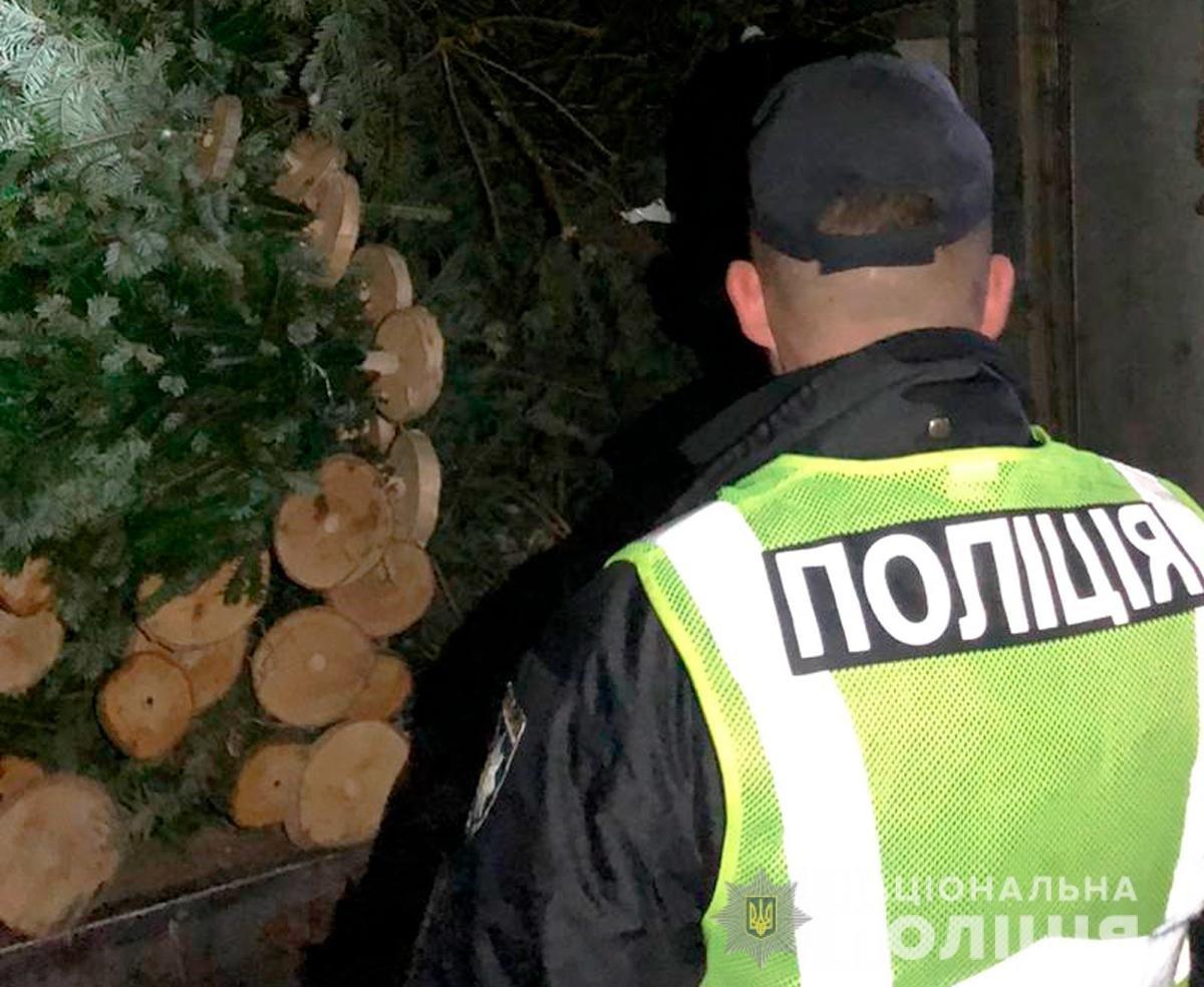 Фактична кількість дерев майже втричі перевищувала вказану в документах