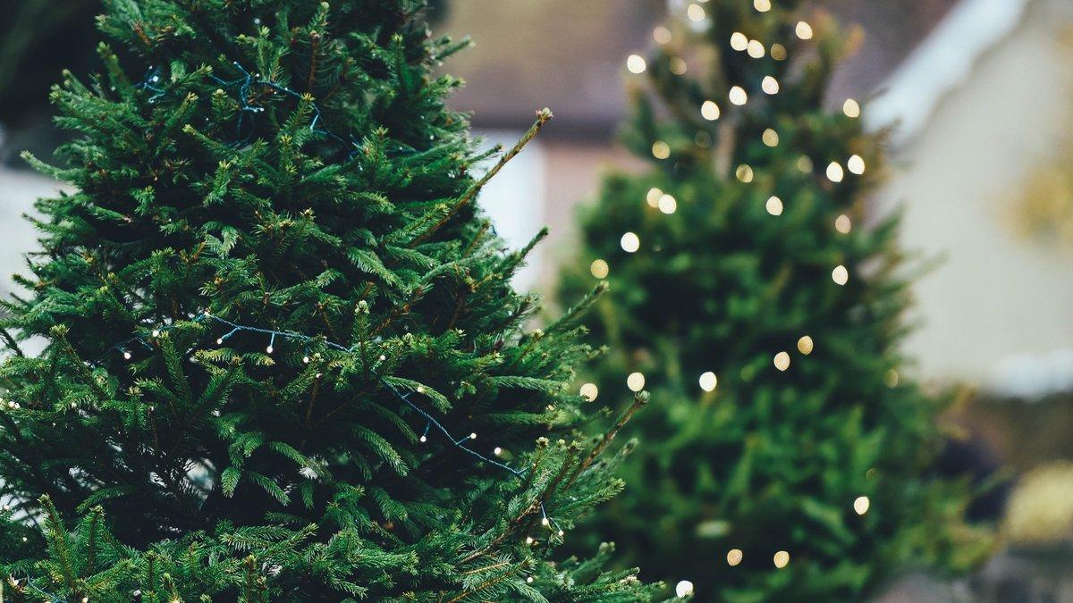 Свято 27 грудня