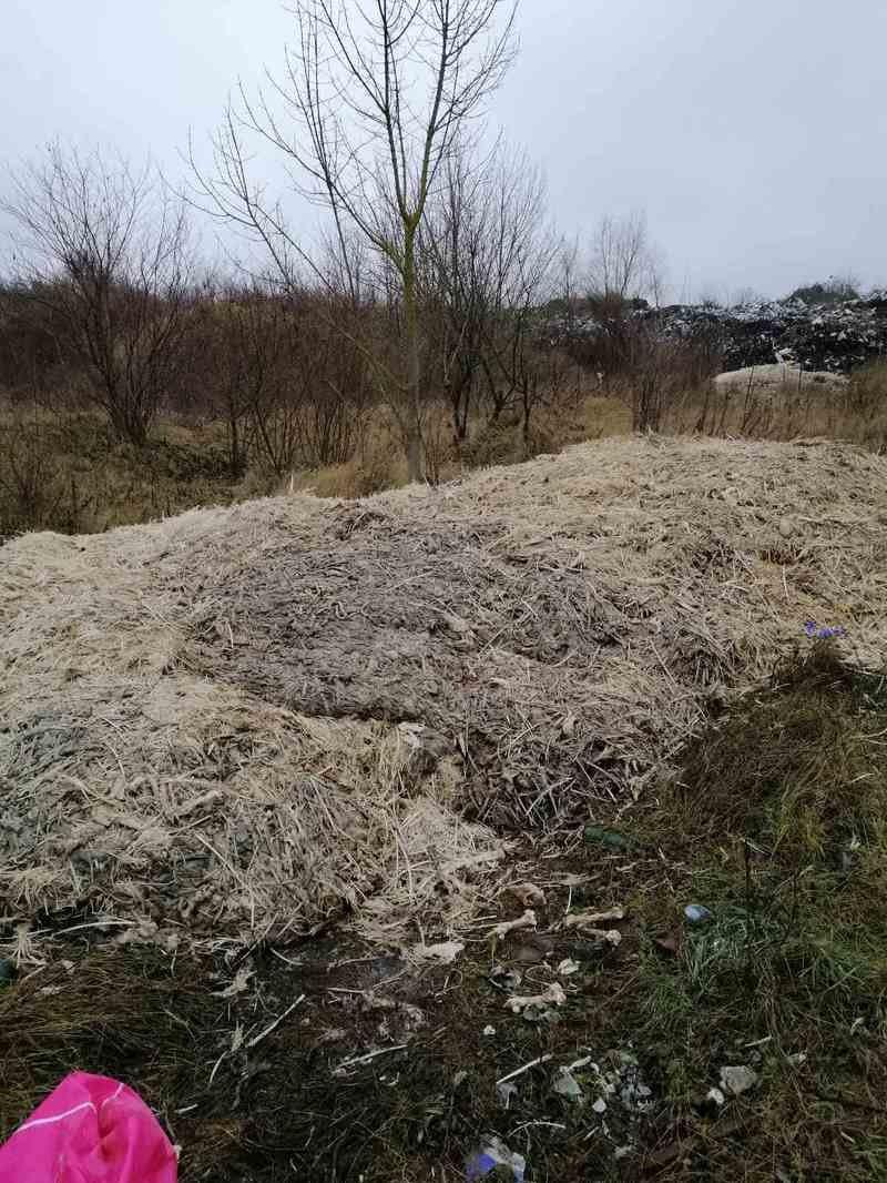 Утилізація сміття на Буковині
