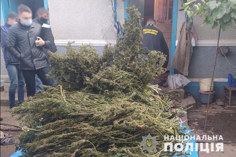 Майже 20 кг наркосировини знайшли у буковинця під час обшуку