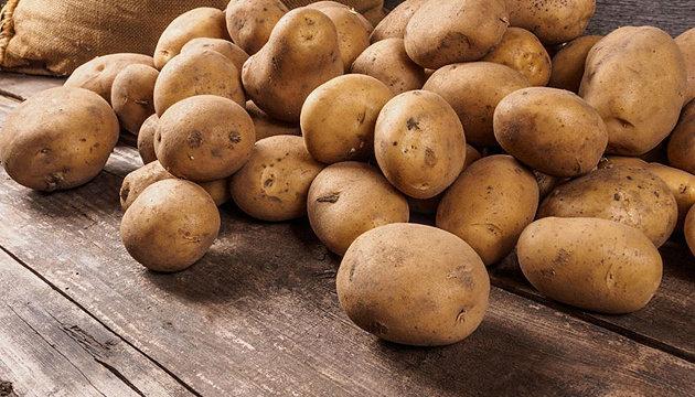 В Україні за останній тиждень різко зросла ціна на картоплю, фото-1