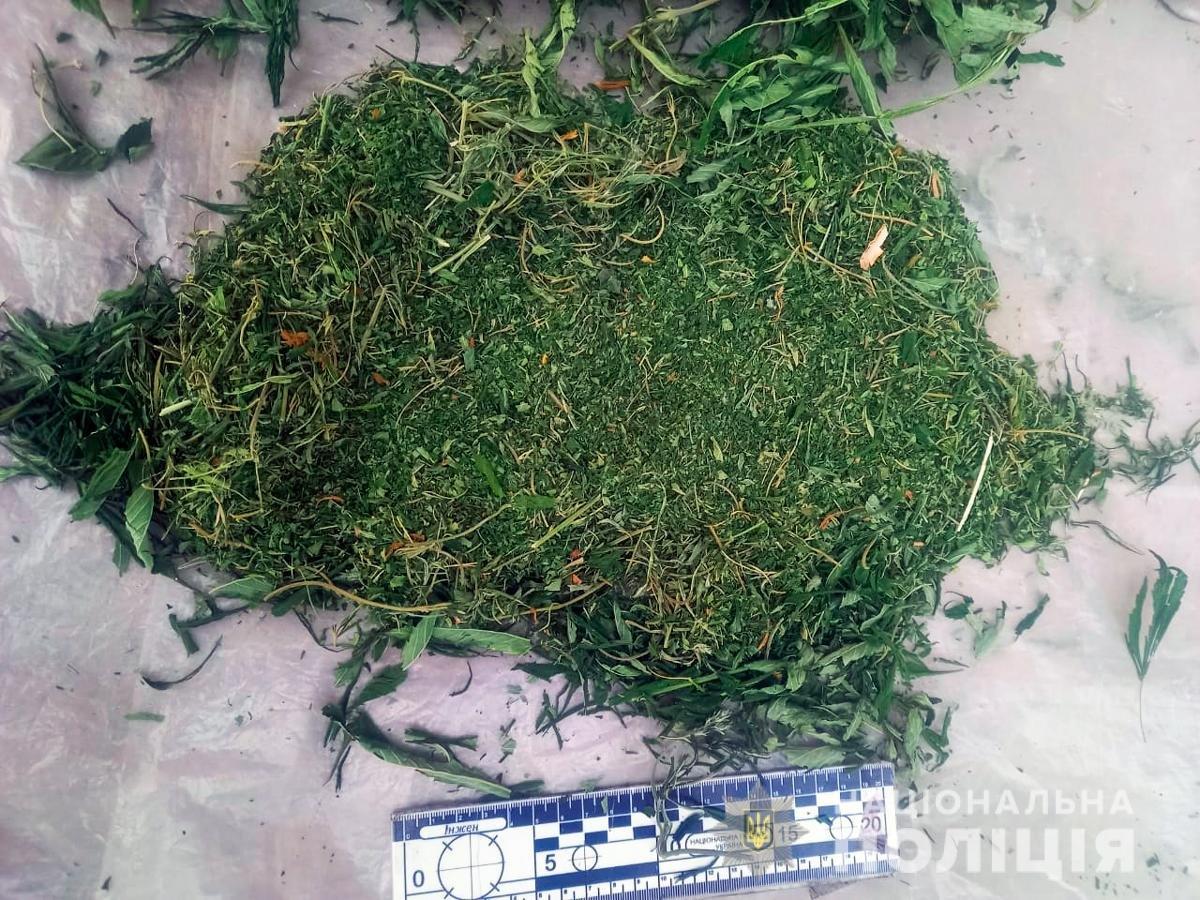 На Буковині незаконно вирощували коноплі