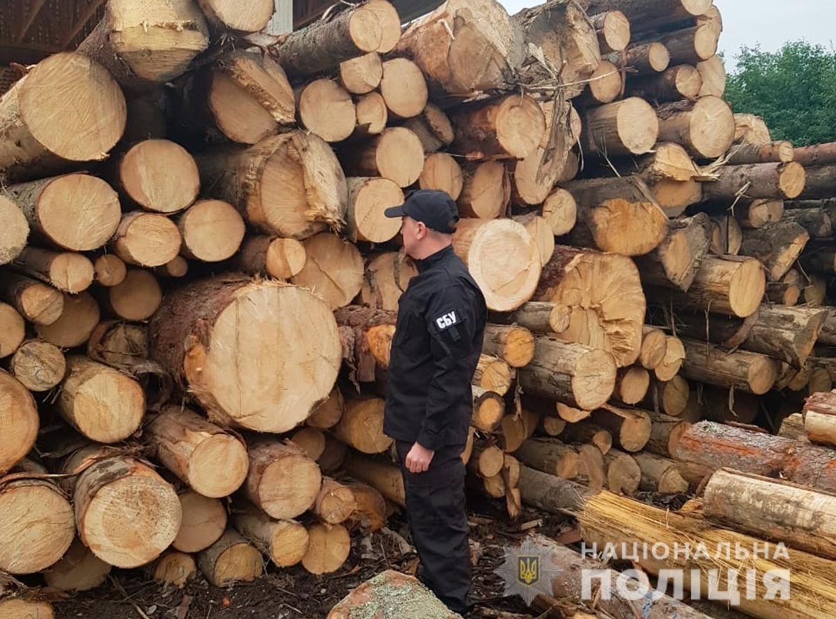 Незаконний експорт деревини