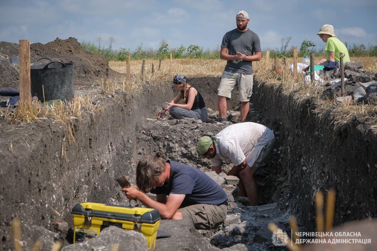 Археологи у с. Бузовиця